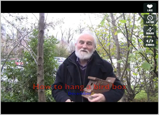How to hang a bird box