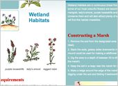 How To Make Wetland Habitats